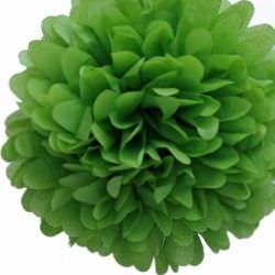 зеленый помпон